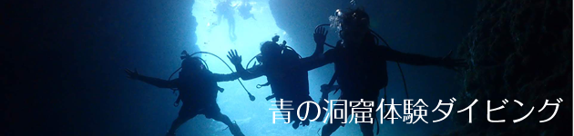 banner_ao_diving.png